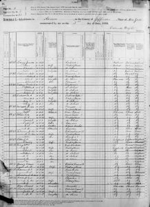 Sample page taken from the 1880 United States Census for Adams New York