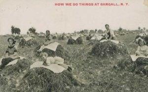 How we do things at Bangall NY Postcard