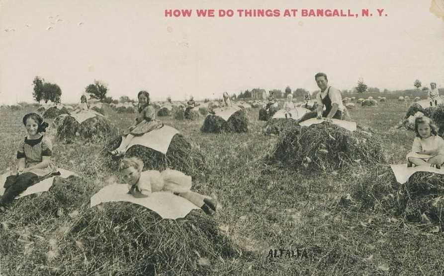 How we do things at Bangall NY Postcard